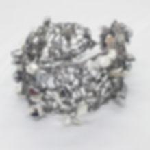 silverbra1.jpg