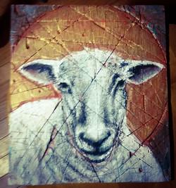 Way of the Lamb