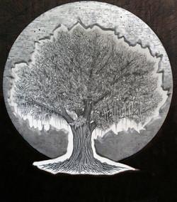 St. Oak Tree