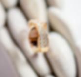 aria-ring.jpg