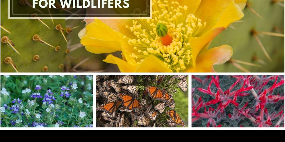 Western Section Workshop- CA Botany for Wildlifers