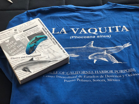 Vaquita: Extinction in Real Time