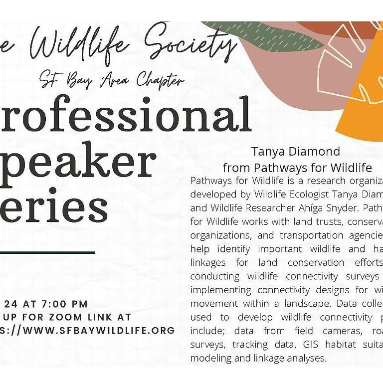 Recording of Professional Speaker Series - Tanya Diamond