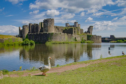 _IMG4379 Caerphilly Castle