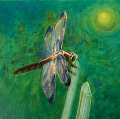 Dragonfly - Vibration