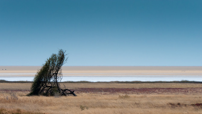 Namibia Revisited
