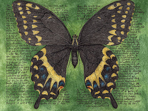 "Papilio palamedes 8x10"" Limited Edition Print"