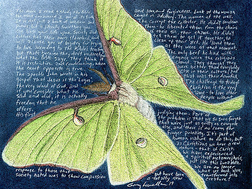 "Actias luna, flying 8x10"" Limited Edition Print"