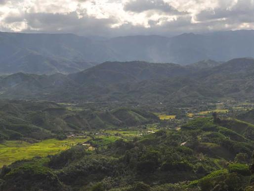 Navigating Forest Changes in Central Vietnam