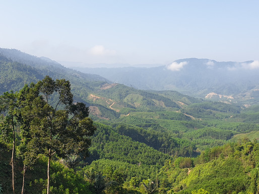 Workshop on Sustainable Forest Landscape Governance in A Luoi Valley