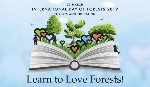 INTERNATIONAL DAY OF FORESTS 2019: LEARN TO LOVE FORESTS