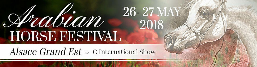 PSYCHE LEJLA ARABIAN HORSE FESTIVAL ALSACE GRAND EST ECAHO C INTERNATIONAL SHOW EvoPegasus, QUALITY POLISH ARABIANS COLLECTION in POLAND and FRANCE