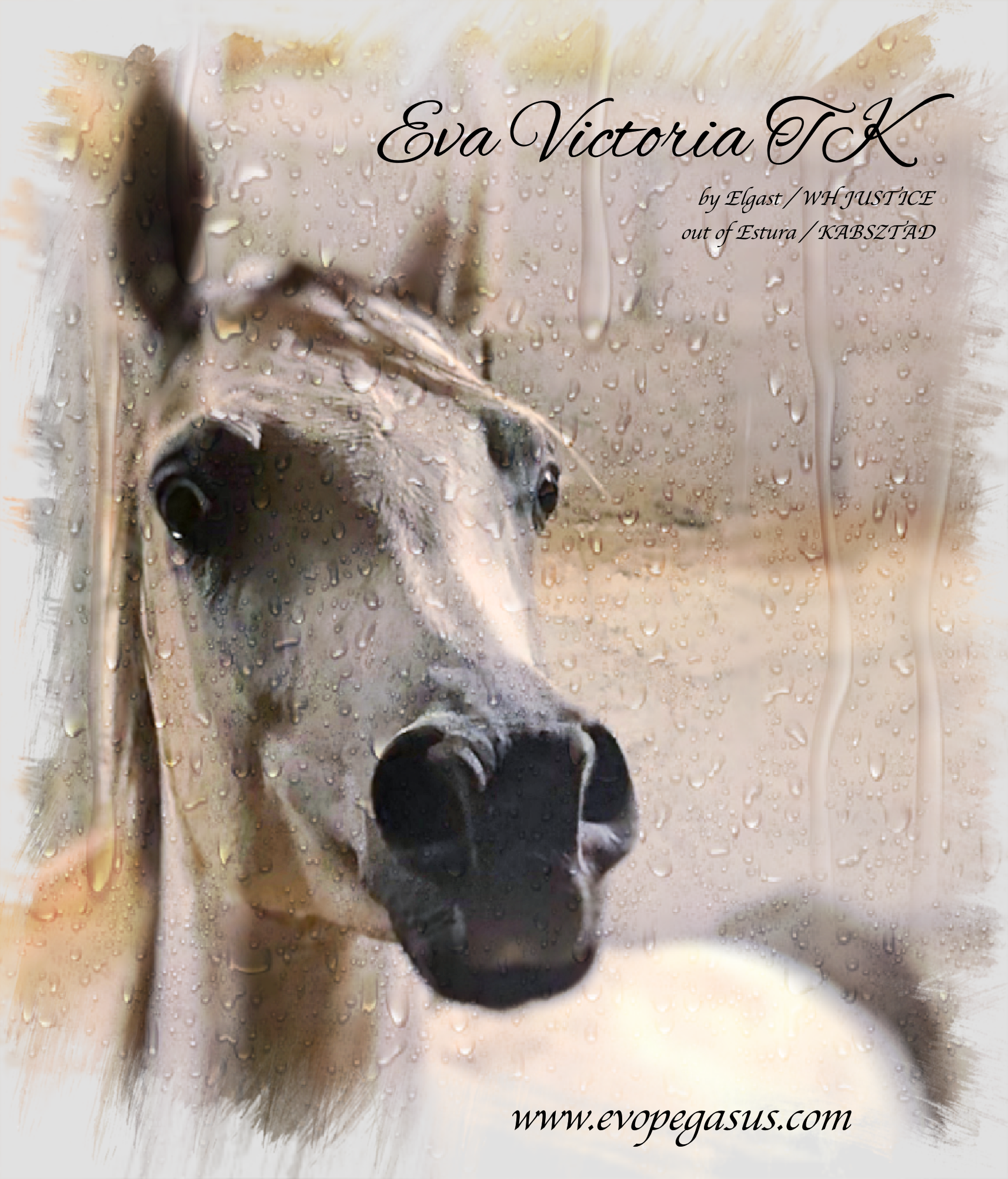 Eva Victoria TK