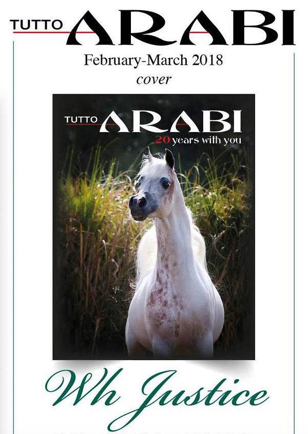 EvoPegasus marque déposée Cheval Arabe Elevage Horse Show Owner : Psyche Lejla & Eva Victoria TK, Grandfather Eva Victoria TK