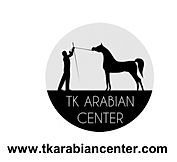 TK Arabian Center Breeder of Eva Victoria TK