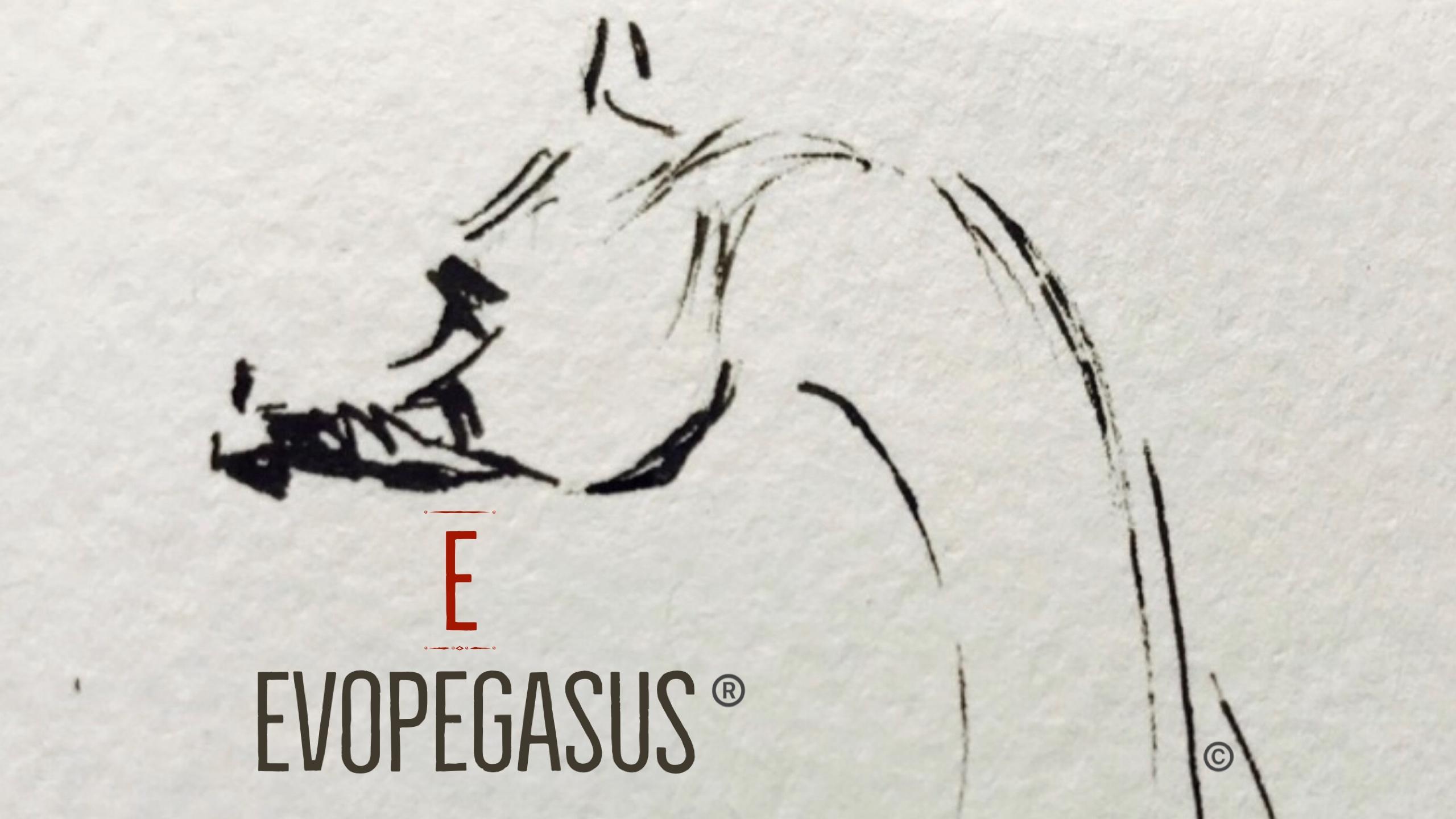 EVOPEGASUS - Marque Déposée