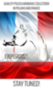 EvoPegasus marque déposée Cheval Arabe Elevage Horse Show Owners : Psyche Lejla & Eva Victoria TK