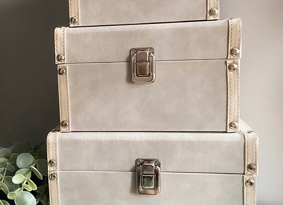 Imperfect set of grey storage trunks