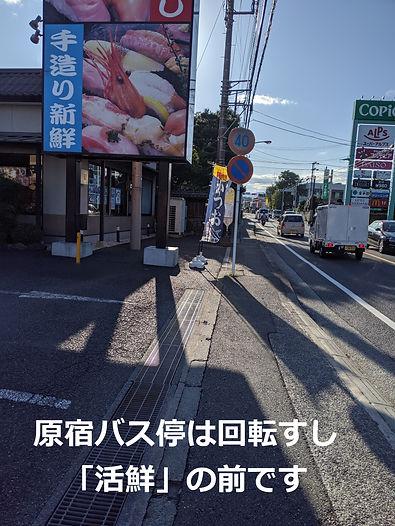 武村整体・アクセス・道案内の画像・原宿バス停前