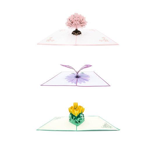 Frühlingsset (3 Karten)