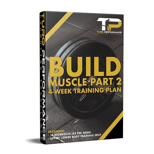 Build Muscle Part 2