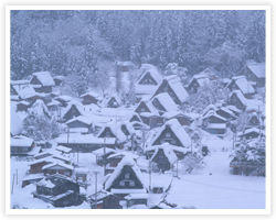 積雪にも強い構造