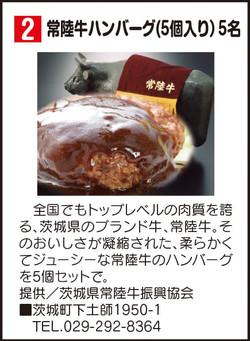 常陸牛ハンバーグ(5個入り) 5名