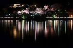 千波湖ライトアップ