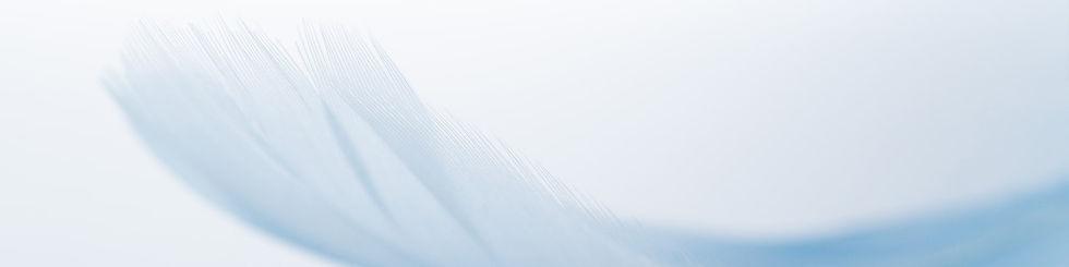羽毛布団リフォーム背景-min.jpg