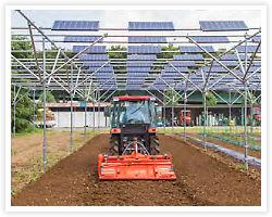 太陽光を農業と発電で共有(シェア)。