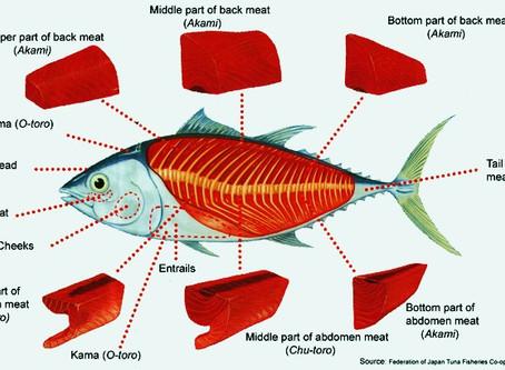 How Do You Prepare Tuna for Sushi?