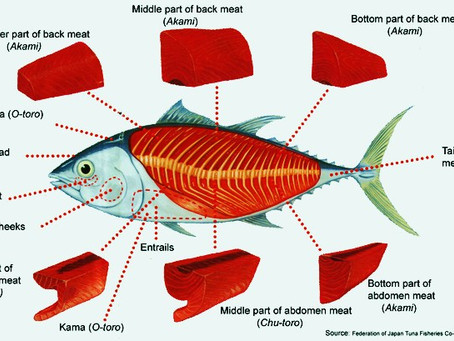 How Do You Prepare Tuna for Sushi?