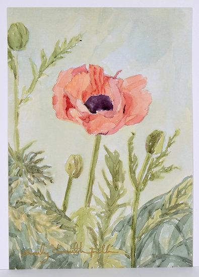 "Park City Poppies V.I - 5x7"" Print"