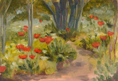 Alpine Poppies V.V