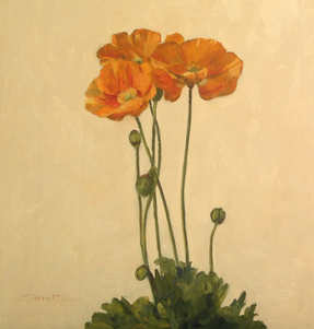 300 Plates Show, Poppies