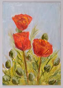 Alpine Poppies V.IV