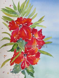 """Red Hibiscus, Turquoise Sea"""