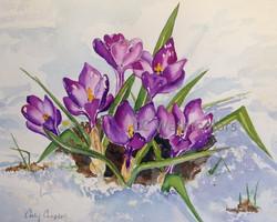 """""""Awaiting Spring"""""""""""