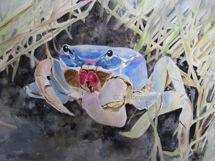 """""""Crab Grass"""""""