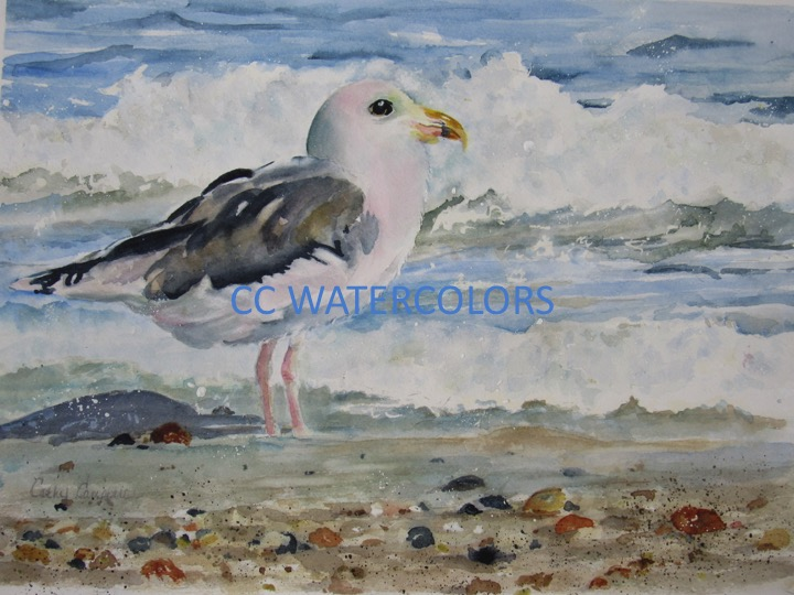 """""""Gull-iver's Travels"""""""