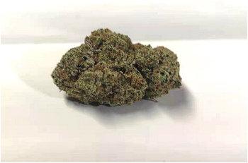 (B.C) Purple Haze AAAA+ (14g/Half Ounce)