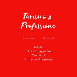 Turismoxprofessione