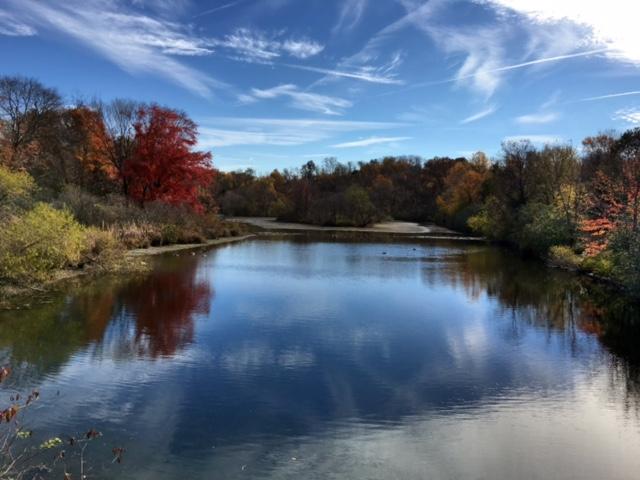 Fall in Howard county
