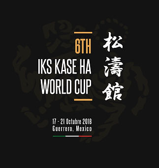 Banners6thIKSworldCup-02.jpg
