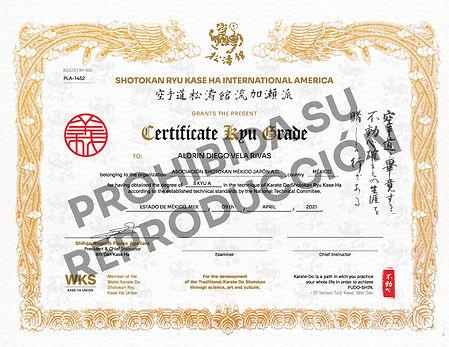 ASMJ_CertificadoKyu_WKS_America_digitalW
