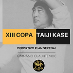 XIII COPA.png