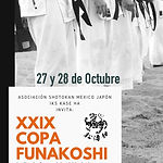 POSTER XXIX COPA FUNAKOSHI 2017.JPG