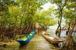 Canoas no Manguezal de Garapuá