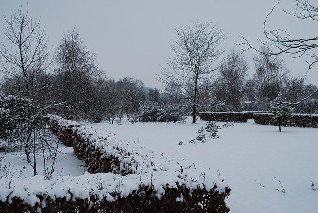 foto wintertuin.JPG