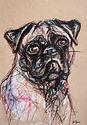 Custom Pet Portrait of a Pug Hand Drawing